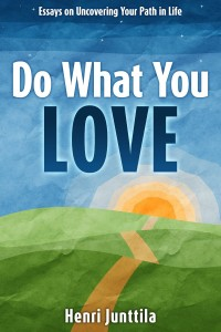 Do What You Love by Henri Junttila